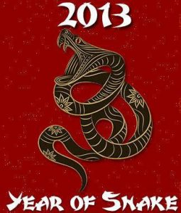 rok-vodniho-hada