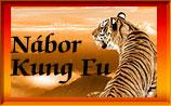 nábor do kung fu