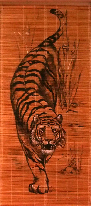 Tygr z tělocvičny Kung-fu